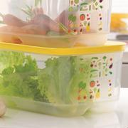 Контейнер Умный холодильник 6,1 литра